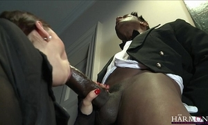 Harmonyvision liza del sierra takes a beamy cock respecting her botheration
